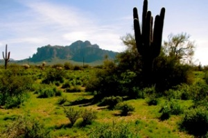 The Superstition Mountains near my studio
